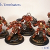 Blood Angels Terminators 1