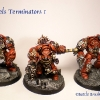 Finished Blood Angels Terminators 5