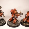 Finished Blood Angels Terminators 9