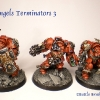 Finished Blood Angels Terminators 10