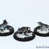 catsback1