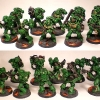 Salamanders Space Marines Tactical Squad