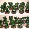 Salamanders Space Marines Tactical Squad