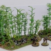 bamboo3schrift1
